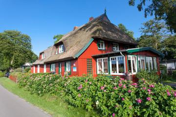 perfekt restauriertes norddeutsches Holzhaus mit Reetdach