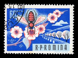 honey bee on flower vintage postage stamp
