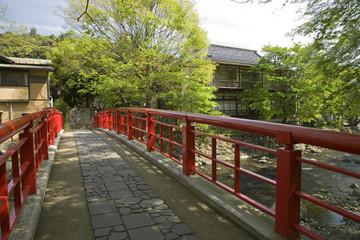 新緑の修善寺温泉