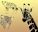 leopard, giraffe and hyena on a yellow background