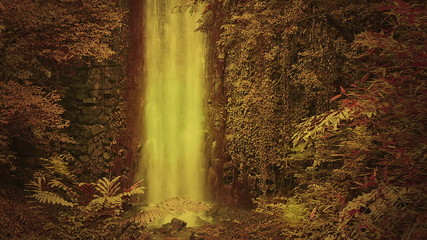Enchanted forest with waterfall