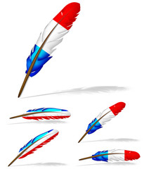 abstract France flag feather isolated on white background