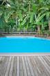 piscine tropicale, bananiers, lames de terrasse teck