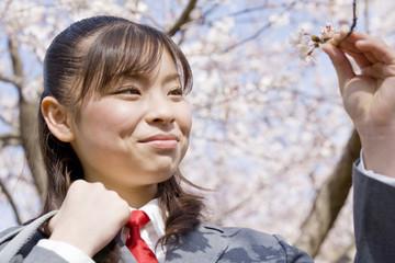 桜のつぼみに触れる女子高生
