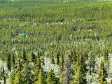 Country Living in Boreal Forest