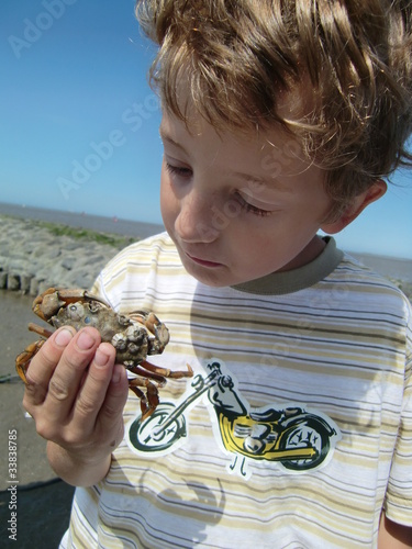 Kind mit Strandkrabbe