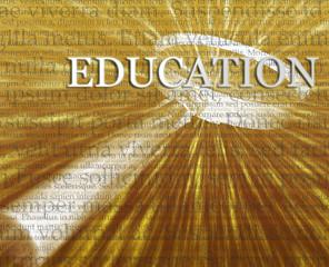 Education search illustration