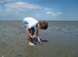 Niedrigwasser im Wattenmeer
