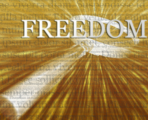 Freedom search illustration