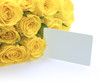 Yellow Roses with Blank Message Card