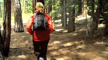 Girl Jogging on National Park Trails