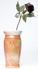 Earthenware vase with dead flower
