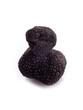 black truffle on white background