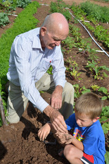 A Grandpa Digging Up Worms with his Grandchild