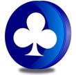 Card symbol glossy icon
