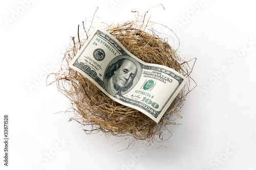 Hundred dollar bill laying in bird nest.