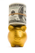 Gold piggy bank with roll of US dollars on head