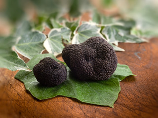 black truffle over leaf on wood background