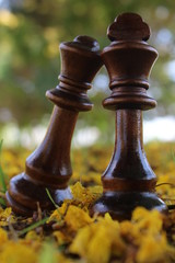 The chess queen and king kissing in the garden