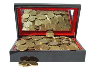 coins in casket