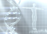 Decoding the genome