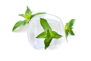Glass of a cocktail from mint