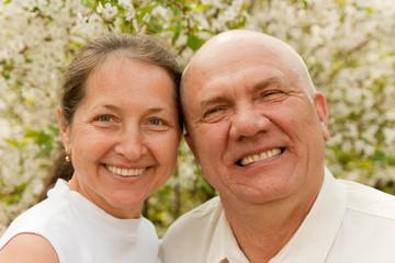 Elderly couple in spring