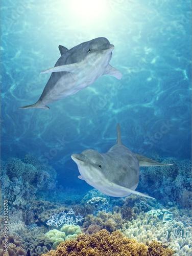 Plexiglas Dolfijnen happy dolphins