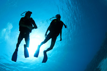 silouetted scuba divers on coral reef