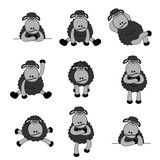 Cute Black Sheep Set