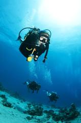 female scuba diver enjoys a dive in ocean