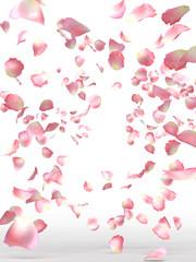 BlossomShower_image