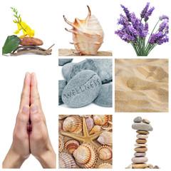 wellness collage
