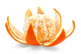 Mandarin on the peel by purified poster