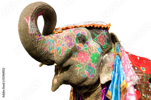 Tuinposter Olifant hand painted elephant profile, Jaipur, Rajasthan,India