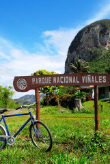 vinales sign