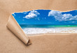 Summer Beach Revealed