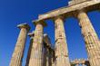 Colonne del tempio di Era - Selinunte