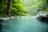 Fototapety 新緑の露天風呂