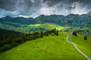 Swiss Alpine meadow under cable car way. Iltios mountain