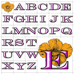 ABC Alphabet background poppy engravers pink design