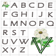 ABC Alphabet background wood eras green design