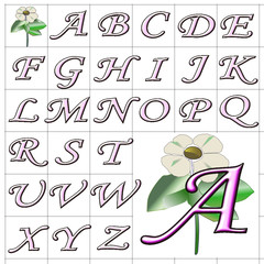 ABC Alphabet background wood mono pink design