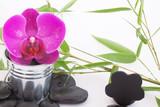 Orchidée dans petit pot en zinc