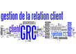 Gestion de la relation client (GRC)