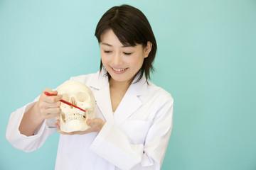 歯の磨き方を教える女性歯科医師