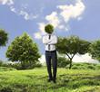 head tree, green eco mind