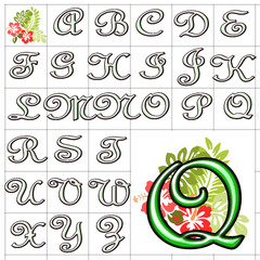 ABC Alphabet background hibiscus french green design