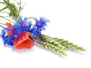 ears of wheat with fields flowers