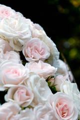 Rosen Bouquet